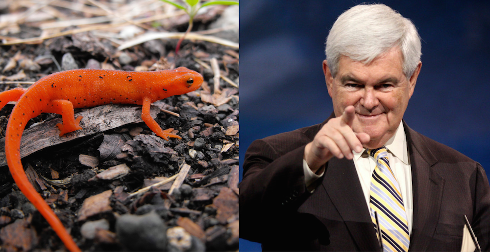 Naive Amphibian Enthusiasts Wildly Disappointed by Tonight's Speaker