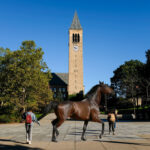 OP-ED: If I Oversleep And You're Walking Slowly In Front Of Me As I'm Late To Class, I Should Be Allowed To Kick You Like A Horse